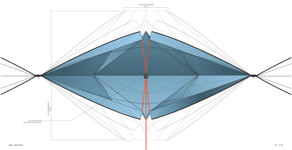1000x514 cheryl baxter cellular canopy