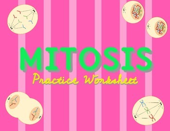 350x270 Mitosis And Cell Cycle Practice Worksheet