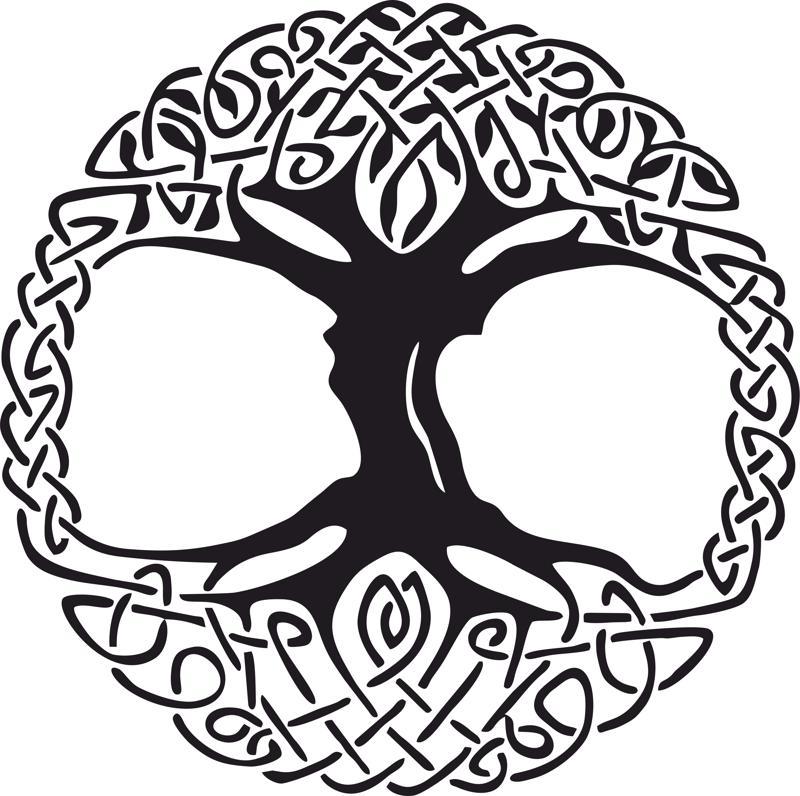 800x796 Celtic Tree Of Life Vinyl Window Sticker Vector Amee House