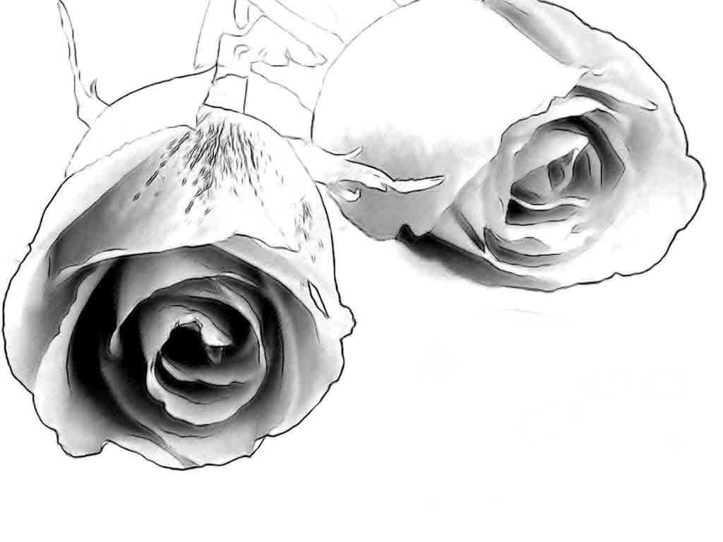 1024x768 Drawing Ideas