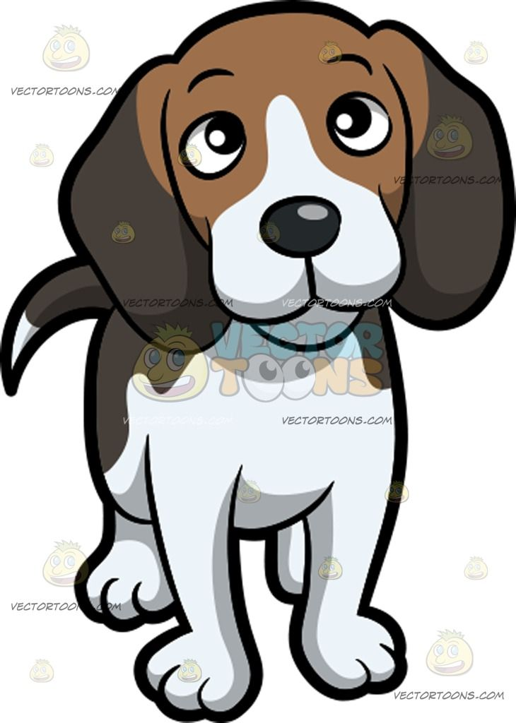 730x1024 An Adorable Beagle With An Inquisitive Look On Its Face A Dog