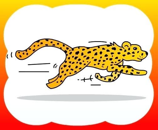 503x415 Cheetah Drawing For Kids Nip