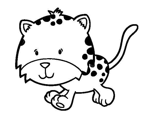 600x470 running cheetah coloring pages cheetah coloring