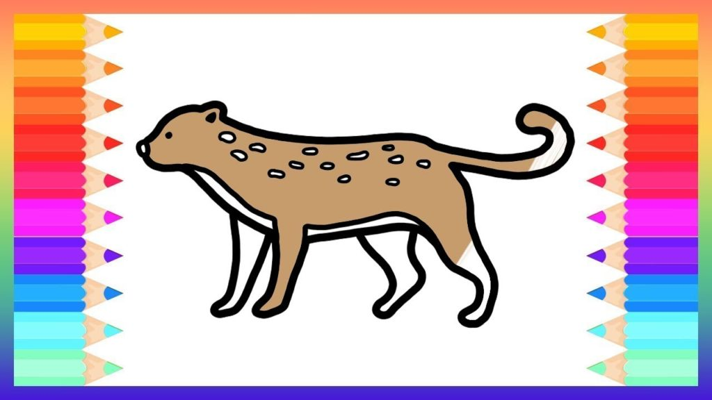 1024x576 How To Draw Cheetah For Baby Drawings And Coloring Book Rainbow