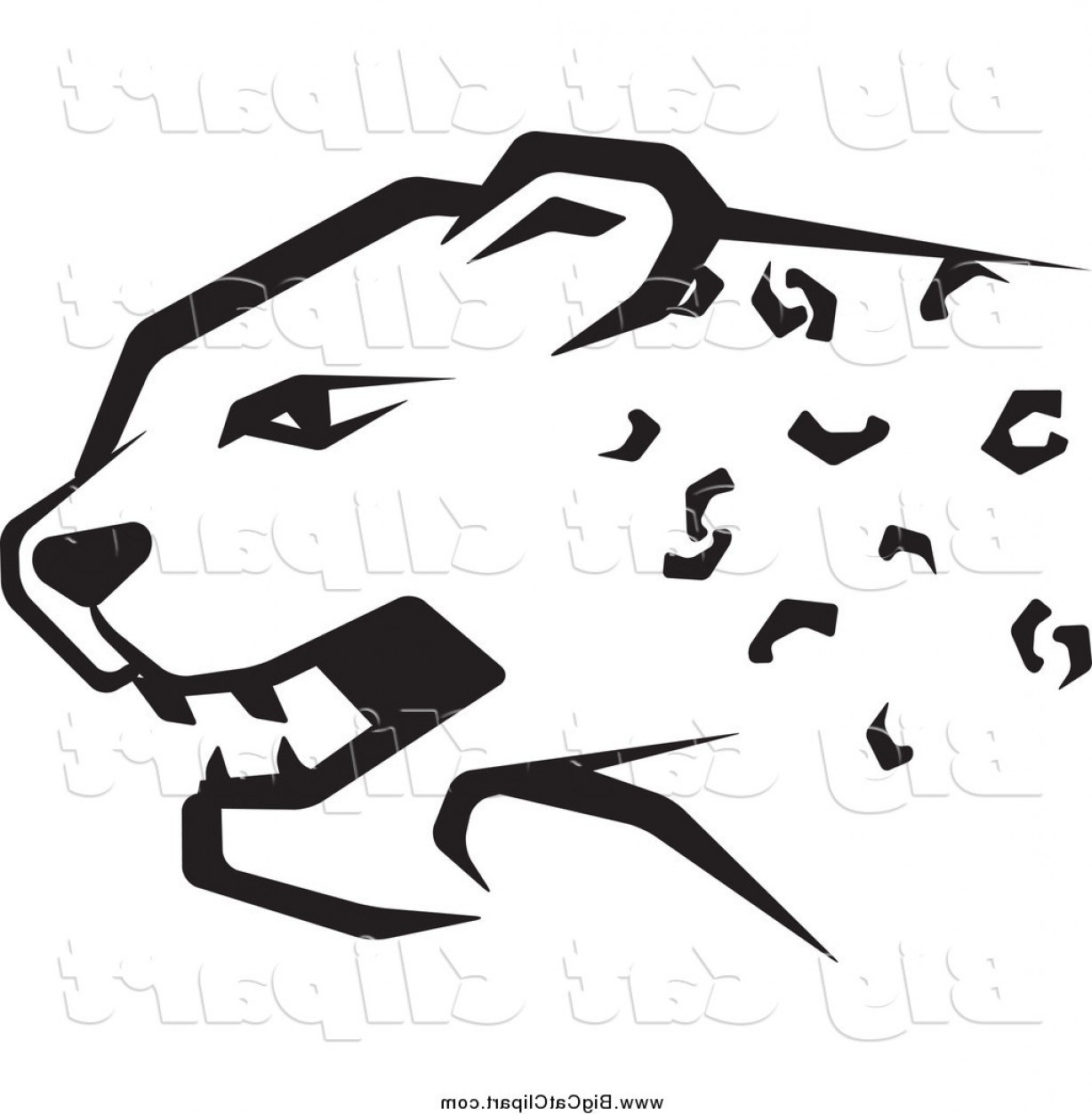 1228x1252 Big Cat Vector Clipart Of A Black And White Cheetah Head