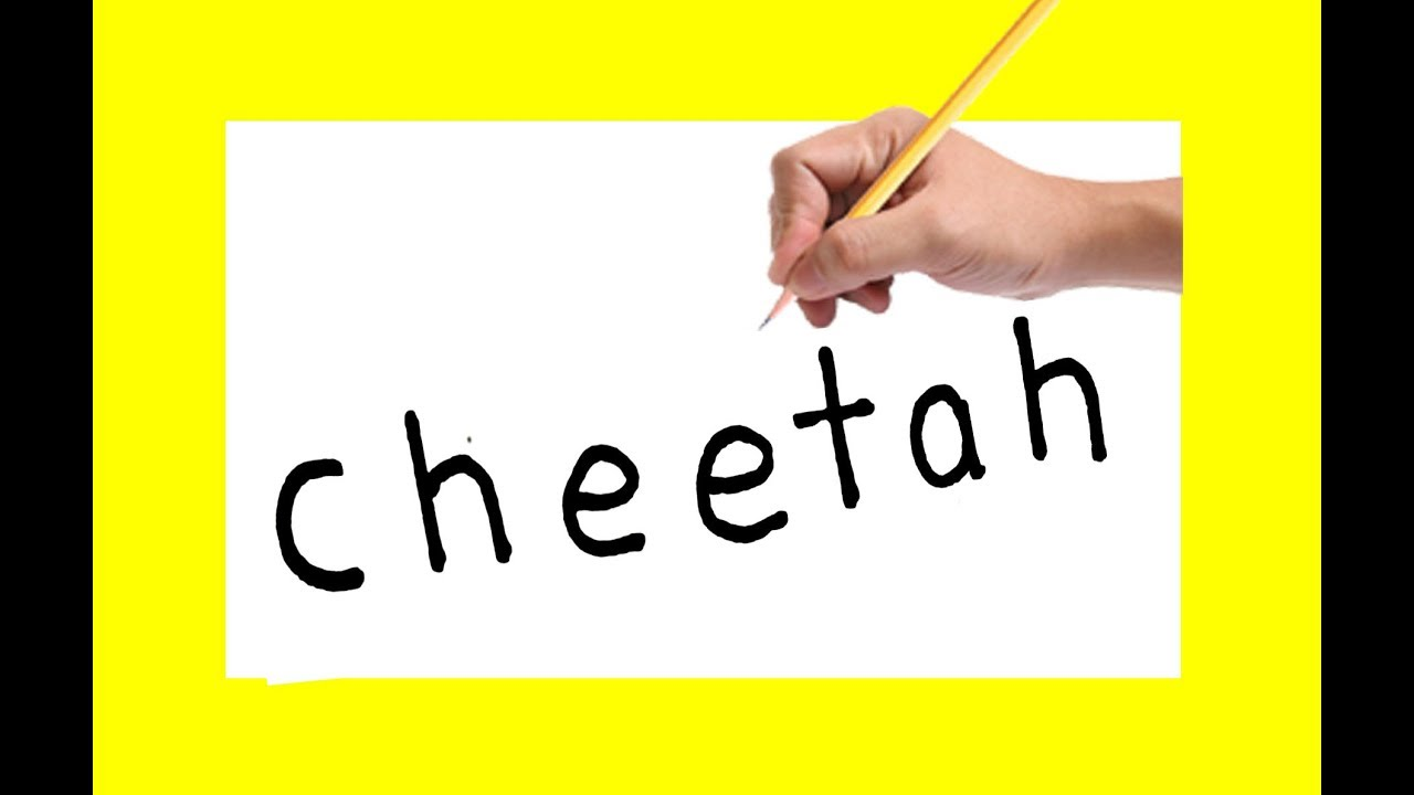 1280x720 how to draw a cheetah using the same words cheetah in to cartoon