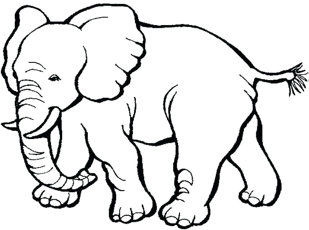 1024x761 cheetah animal coloring pages animal coloring pages online cheetah
