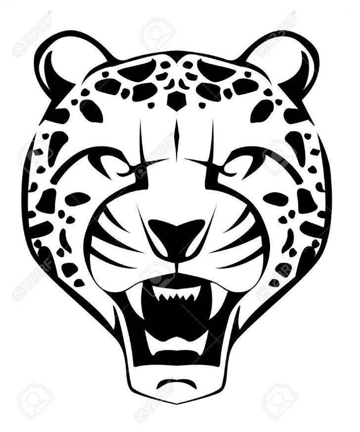 728x873 cheetah drawing realistic tags cartoon animals to draw cheetah
