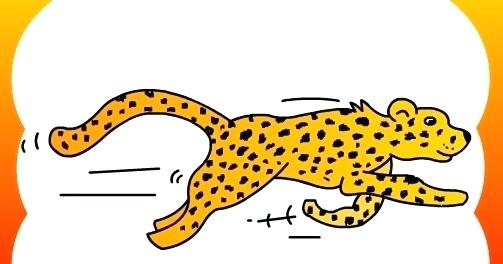 503x264 How To Draw A Chetah Draw Cheetah How To Draw A Cheetah Face Easy
