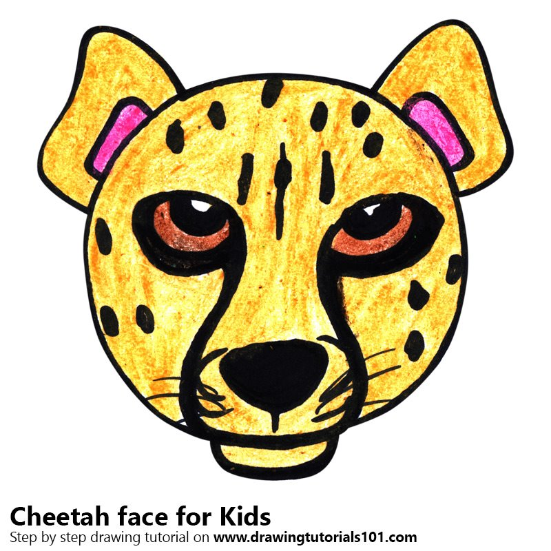 800x800 Learn How To Draw A Cheetah Face For Kids