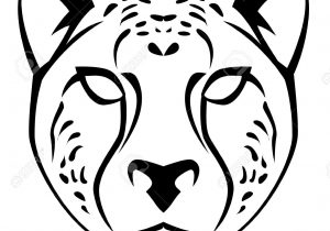 300x210 drawing cheetah face pic drawn cheetah head