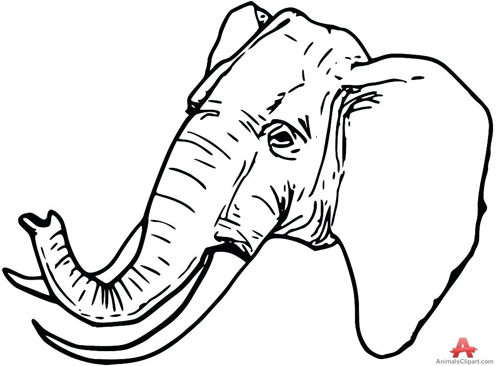 999x737 outline of elephant cute elephant template baby elephant outline