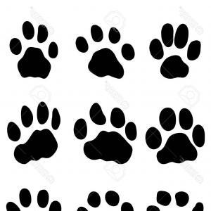 300x300 Leopard Skin Hand Drawn Animal Print Drawing Vector Sohadacouri