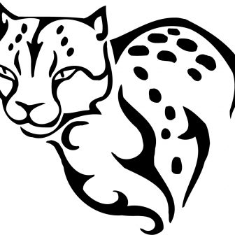 336x336 Printable Cheetah Pages For Adults Colouring In Color Of A Chester