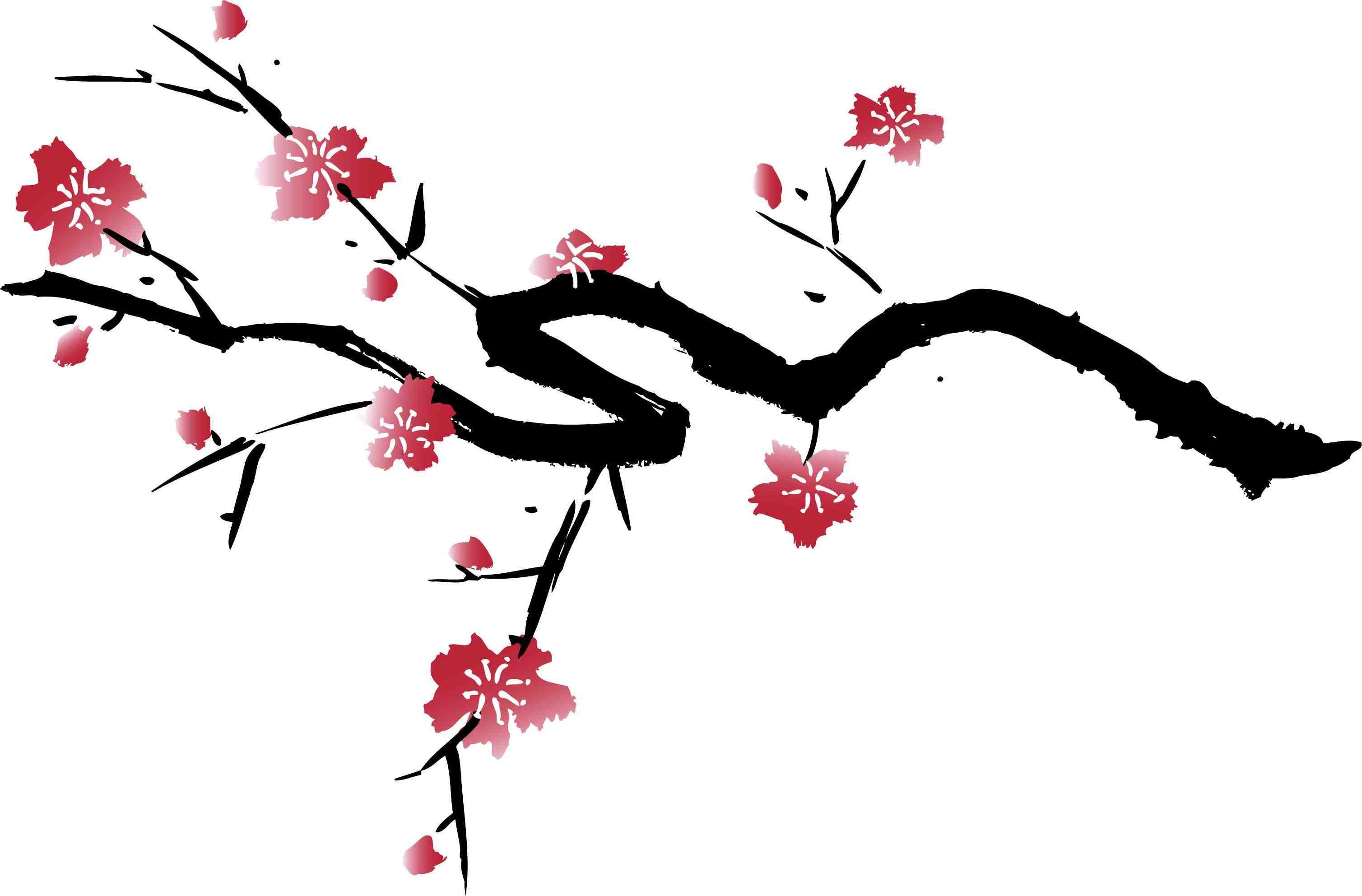 3017x1985 Cherry Blossom Tree Silhouette