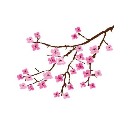 380x400 Cherry Blossom Vector