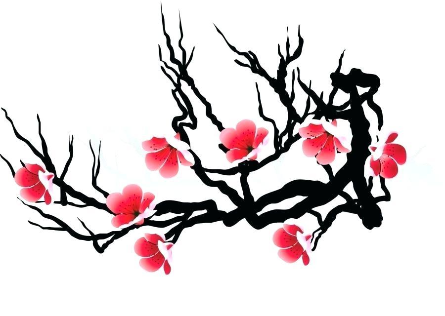 900x640 japanese cherry blossom sketch cherry blossom drawing flower japan