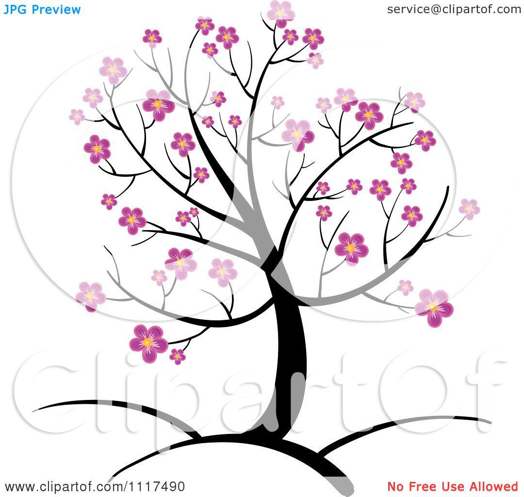 1080x1024 Cherry Blossom Branch Drawings Clip Art