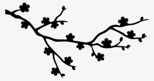 300x159 cherry blossom branch png, free hd cherry blossom branch