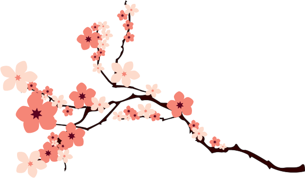 626x366 Cherry Blossom Branch Transparent Png Clipart Free Download