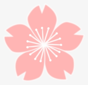 300x290 Cherry Blossom Flower Png Images Png Cliparts Free Download