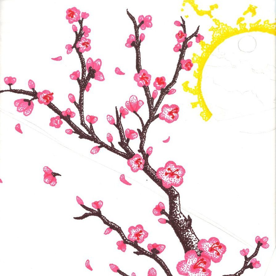 894x894 Cherry Blossom Tree Drawing Cherry Blossom Drawings Clip Art