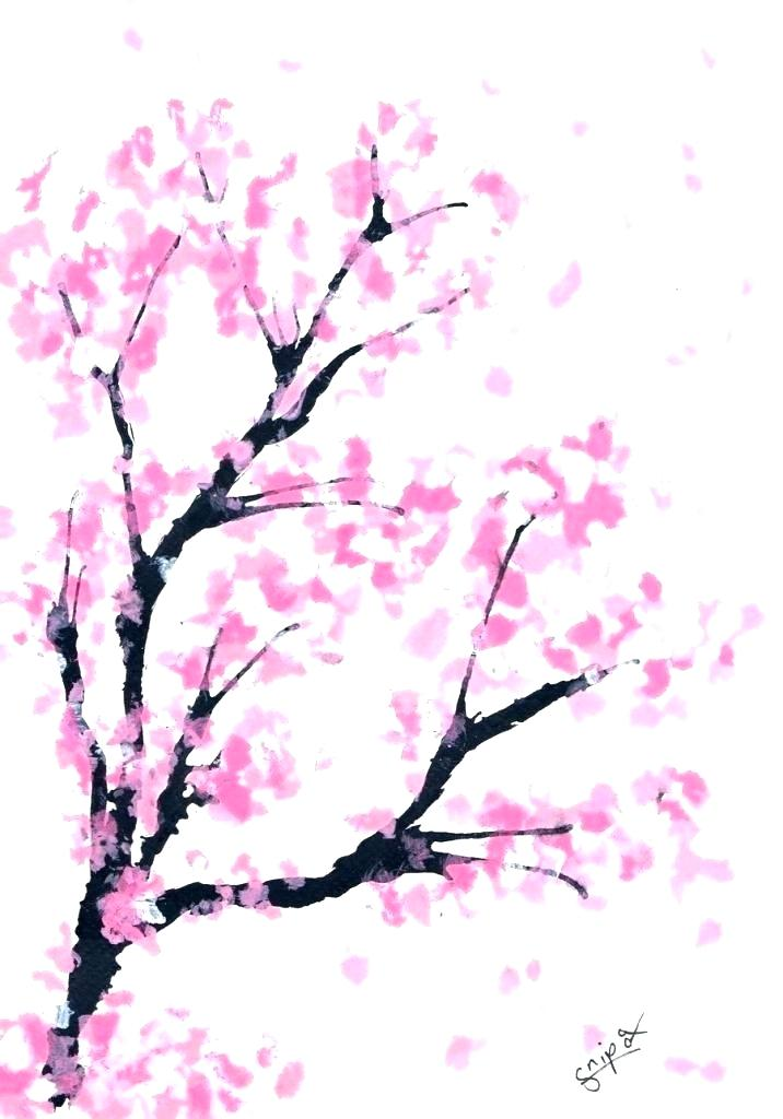 716x1024 Draw Cherry Blossom Blossom Tree Outline Cherry Blossom Tree