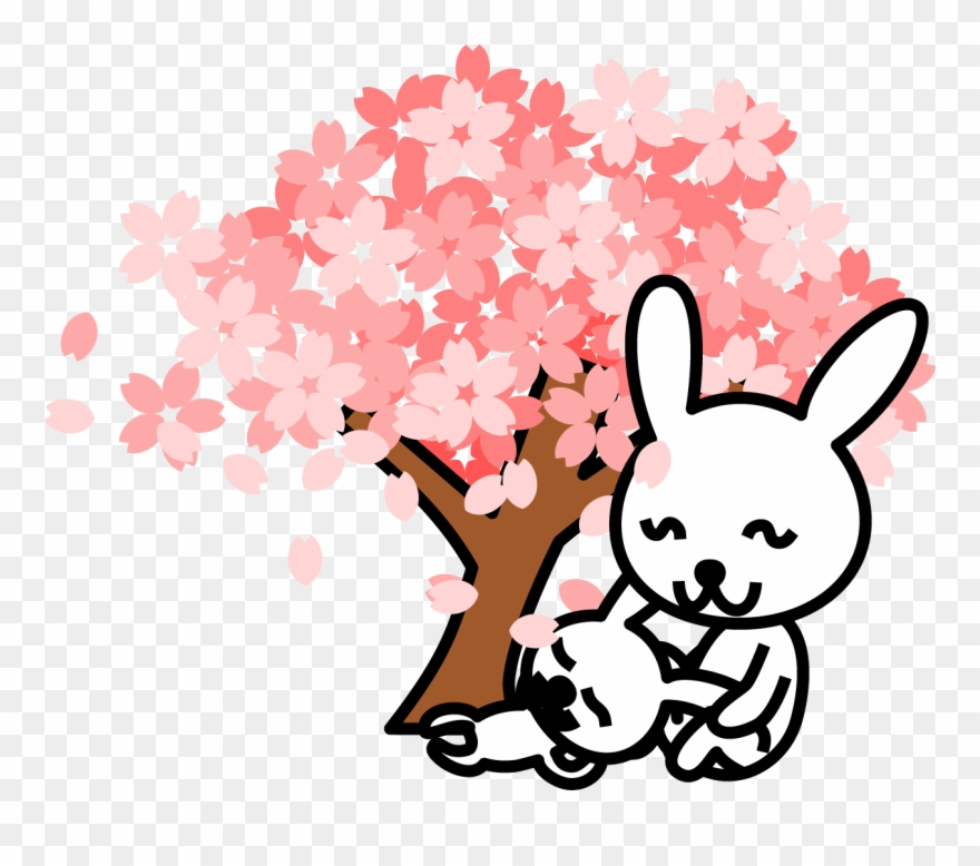 880x778 Cherry Blossom Clipart At Getdrawings