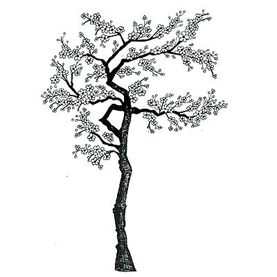400x400 Blossom Tree Drawing