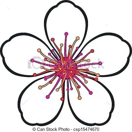 450x453 Japanese Cherry Blossom Drawings Nip