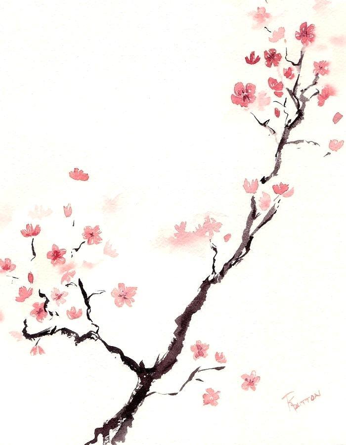 700x900 Cherry Blossom Draw Cherry Blossom