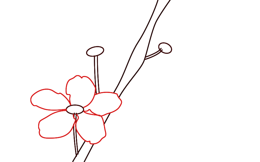 900x563 Cherry Blossom Clip Art