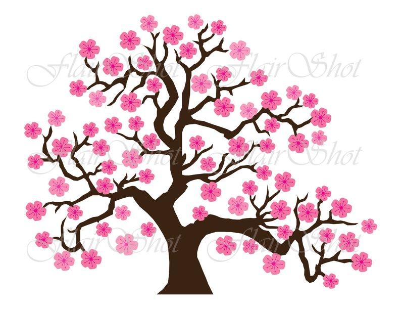 794x613 Digital Clip Art Pink Cherry Blossom Tree Clipart Bonsai Etsy