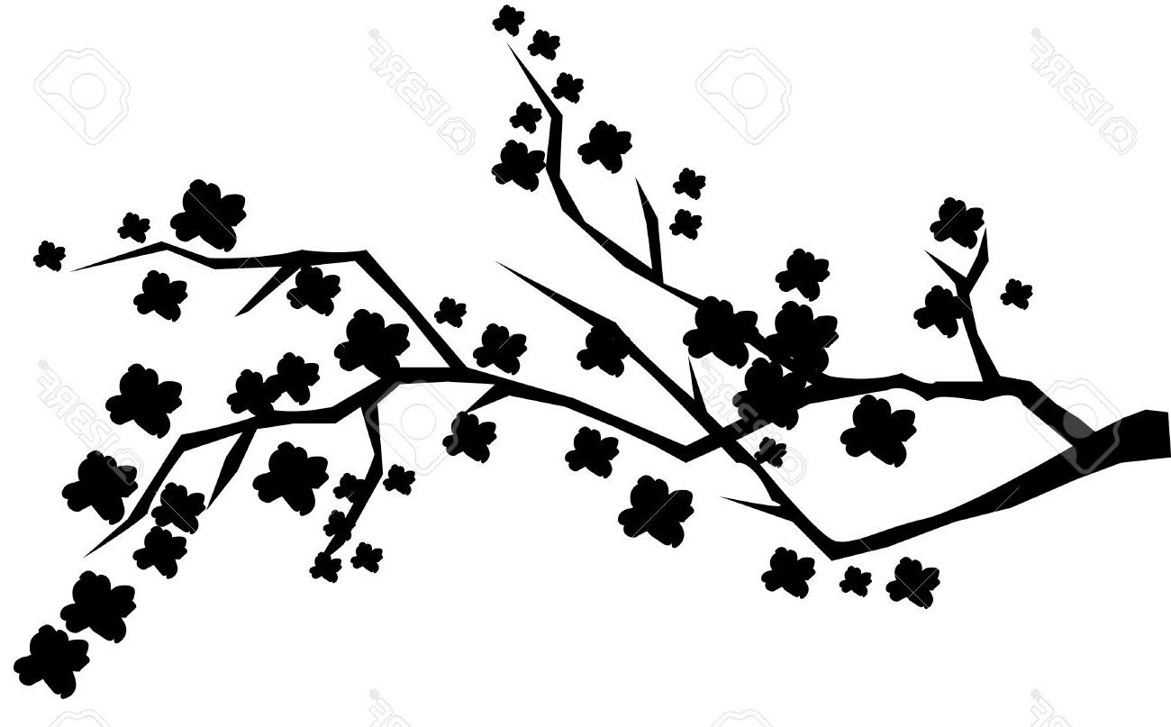1300x807 Silhouette Drawing Cherry Blossom For Free Download