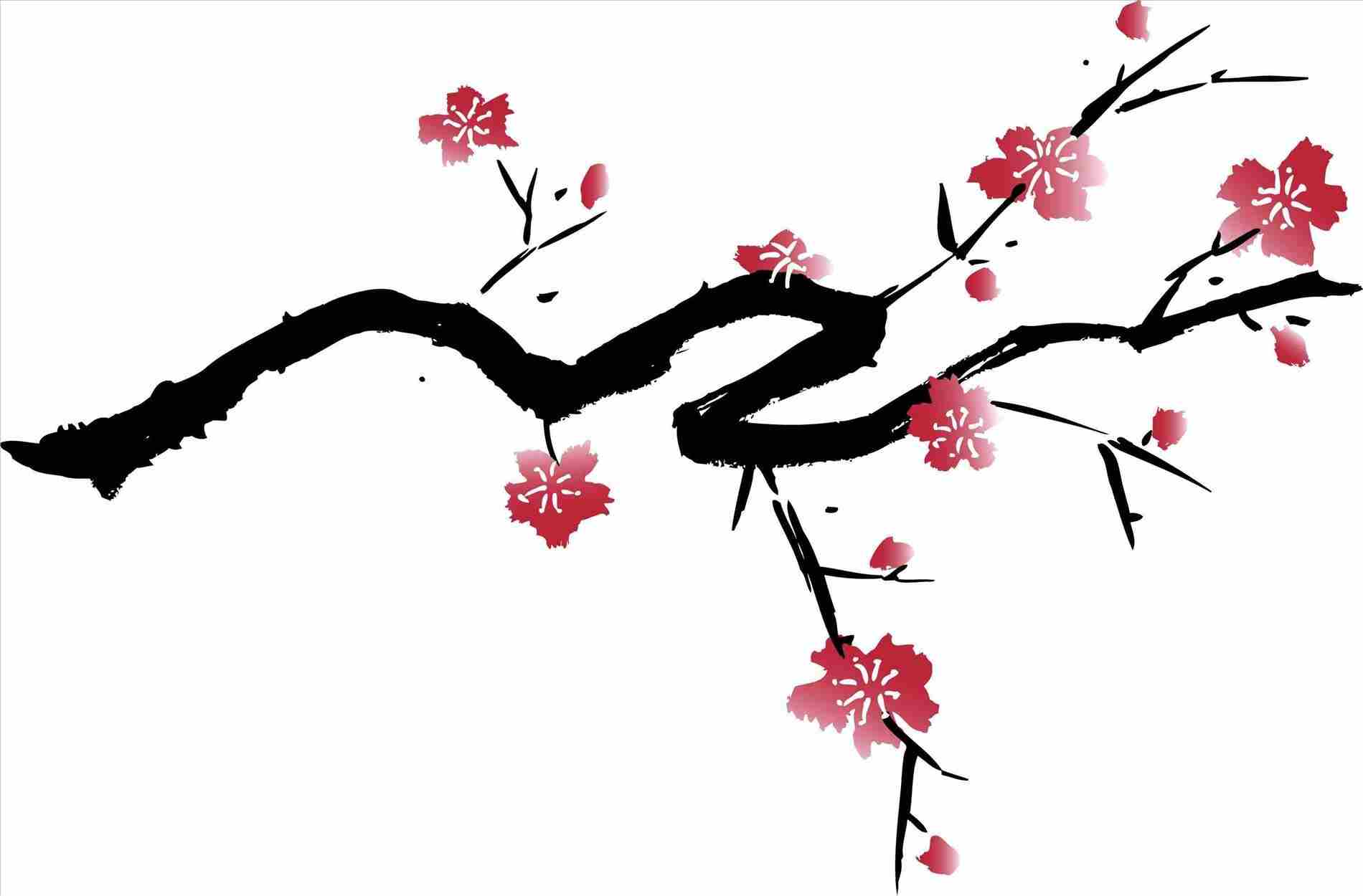 1900x1250 Drawing Blossom Tree Drawing Outline Blossoms