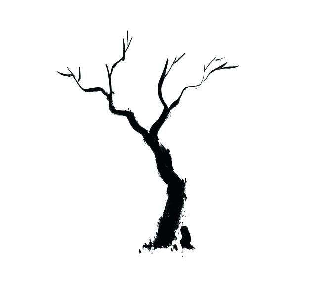 629x569 Large Tree Cut Out Outline Display Branches Clip Art