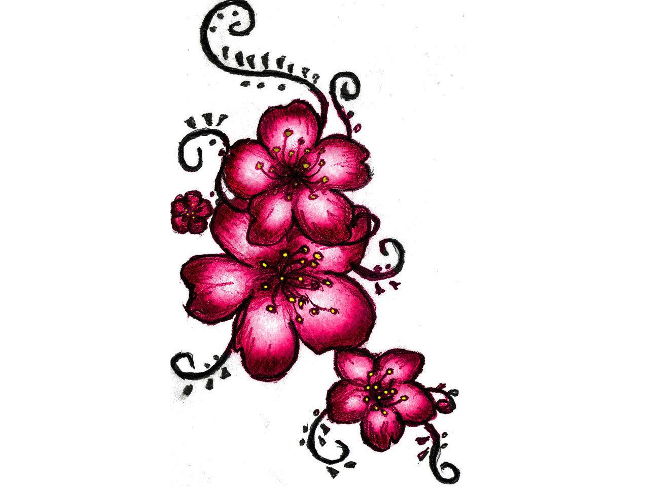 1280x960 Cherry Blossom Outline Design Images
