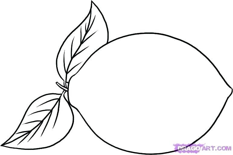 772x512 How To Draw Cherries Step