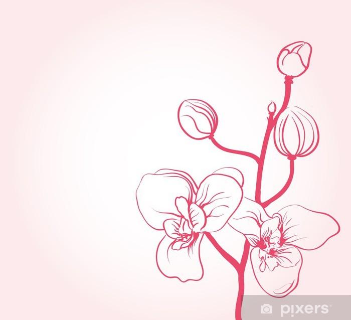 700x638 Sakura Flower Drawing Outline Brepps Wallpaper