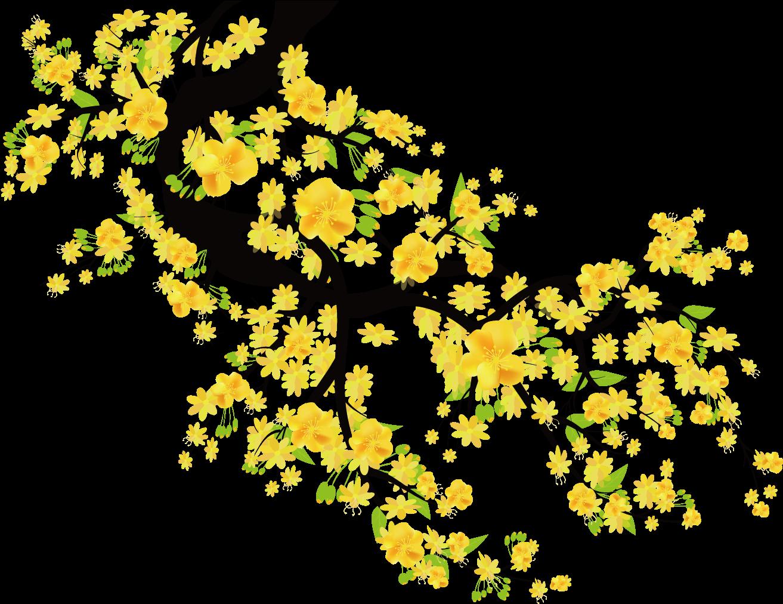 1313x1012 Plum Blossom Euclidean Vector Cherry Blossom