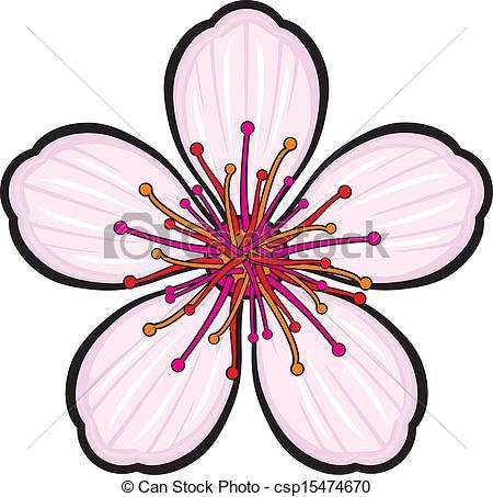 450x453 Cherry Blossom Flower