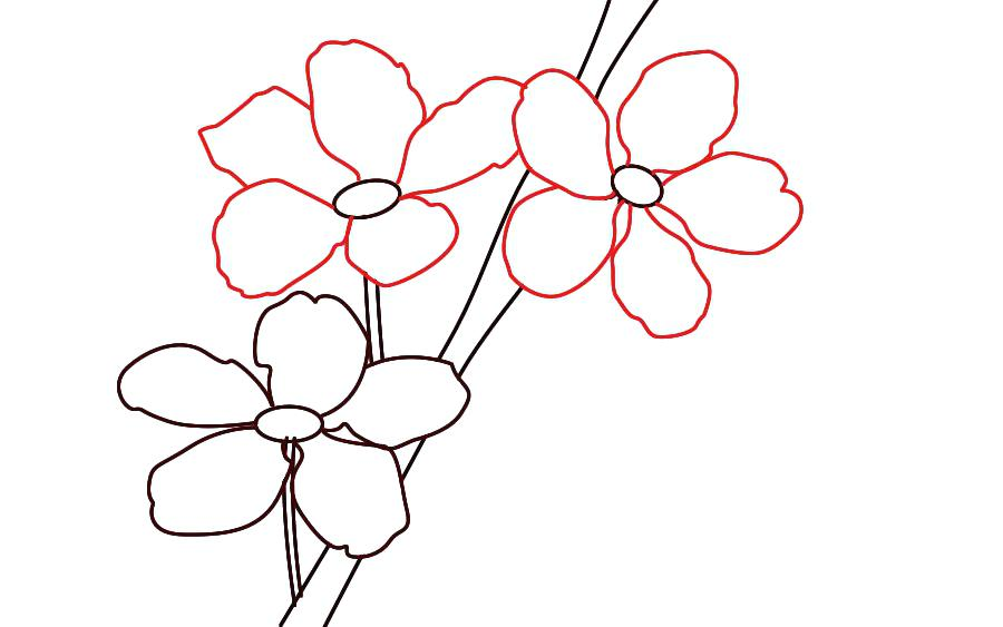 900x563 How To Draw Blossom Cherry Blossom Flower Drawing Draw Cherry