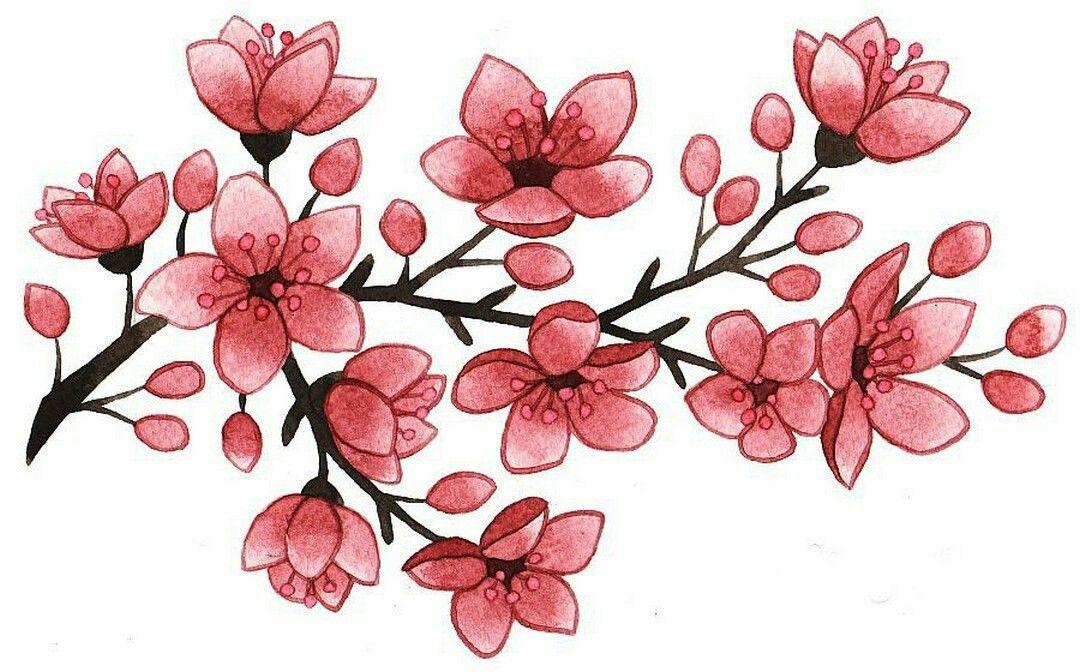 1080x672 Melkie Tcvety In Cherry Blossom Tattoo