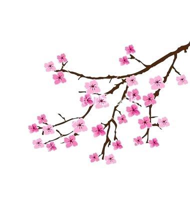 380x400 How To Draw A Cherry Blossom Tree Step