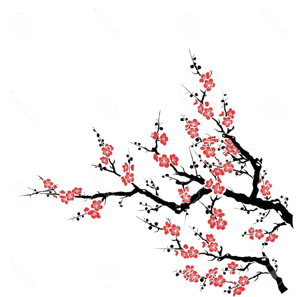 1024x1024 Cherry Blossom Branch Drawing