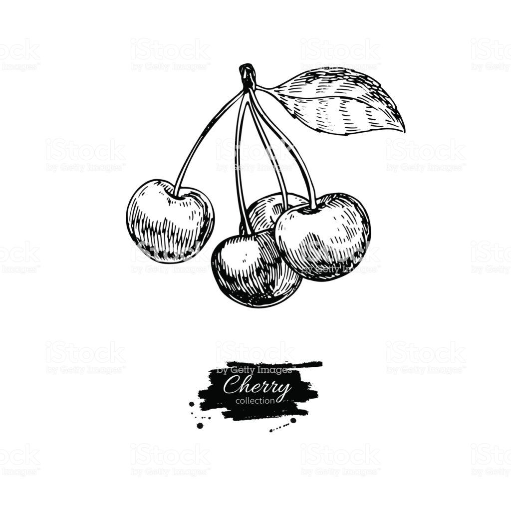 1024x1024 Drawing Cherry Blossom Tree Cute Cluster Cartoon Easy