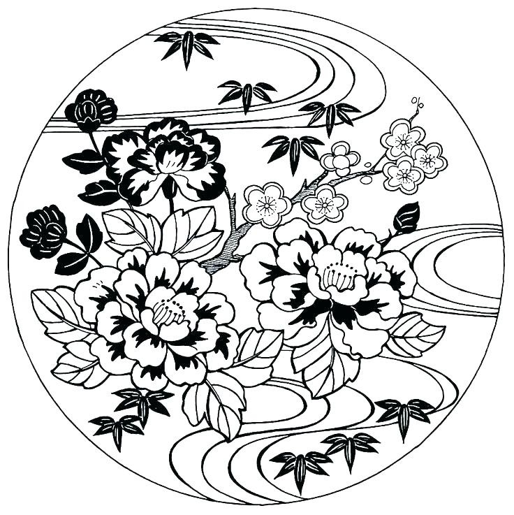 736x737 Japanese Cherry Blossom Coloring Pages Inspirational Art