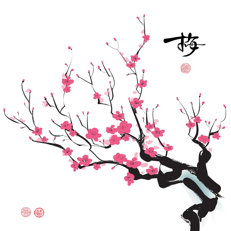 3000x3000 The Last Sakura Blossoms