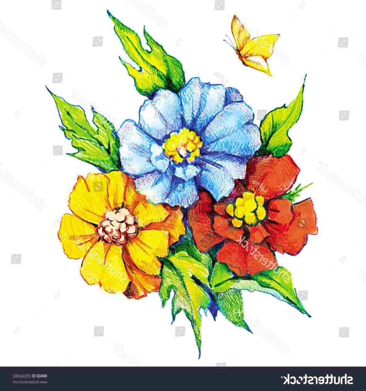 1184x1264 Colored Drawing Stock Rhshutterstockcom Beautiful Beautiful Color