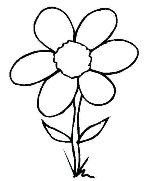 530x627 Flower Drawing Clipart Flower Drawings For Kids Library Flower
